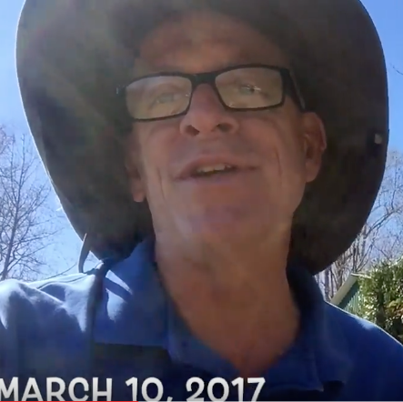 March 17, 2017. To Prune Or Not To Prune – Video